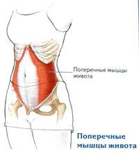 ahol a térdízület gonartrózisát kezelik