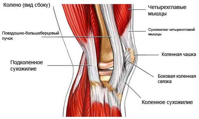 fájdalom és folyadék a térdízületben csípőízületek fájdalom tünetek