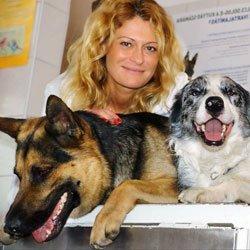 Kerepes-Vet Állatgyógyászati Központ. » Szolgáltatásaink
