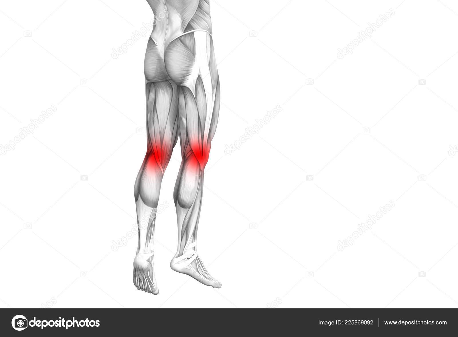 csontbetegség térd osteoporosis medence artrózis kezelése
