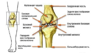 fájdalomcsillapítók térdízület ragasztásainak törésére)
