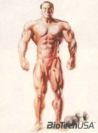 Hogyan lehet a csípő szélességét növelni és lekerekíteni? - Diszplázia