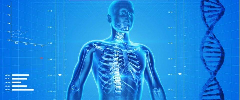 csontritkulás gyógyszer arthra
