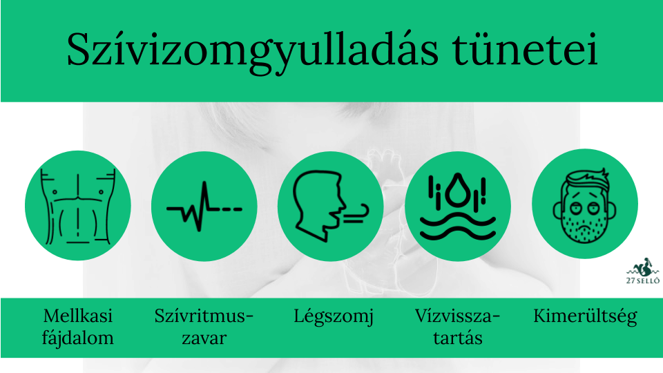 Az érgyulladás (vasculitis) típusai