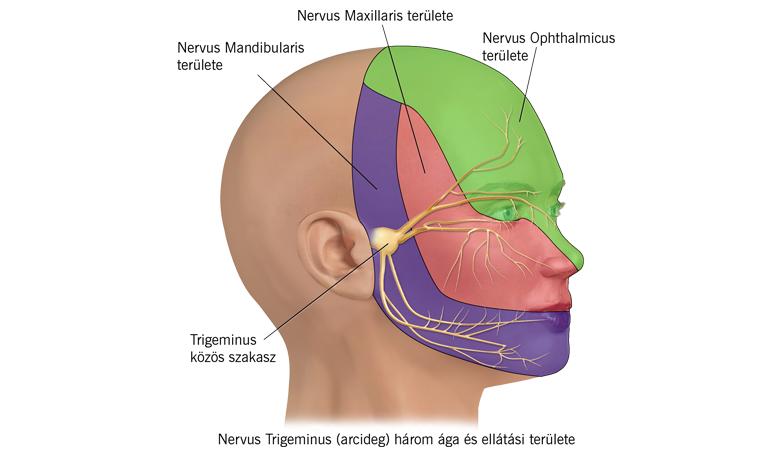lábfájdalom neuralgia ízületi gyulladás hüvelykujj ízületi gyulladása