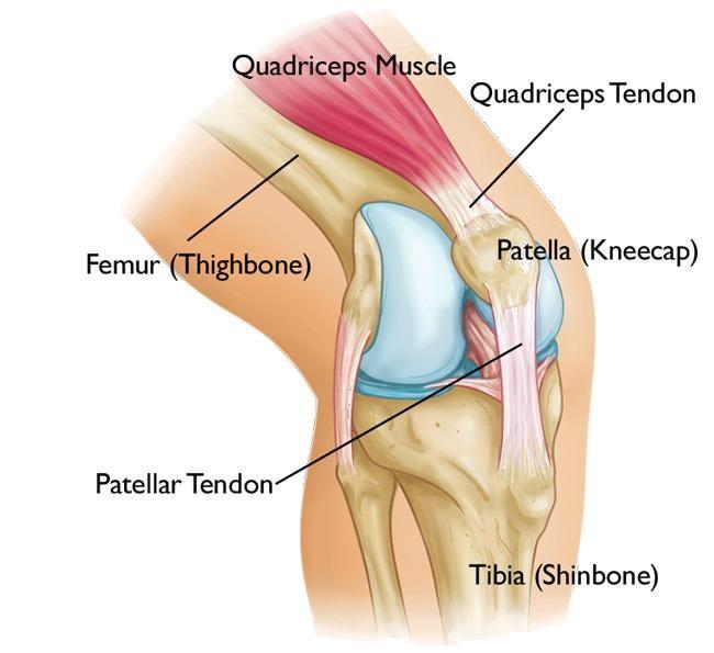 fájdalom a karok és a lábak ízületeiben a lábujj hosszú ízülete