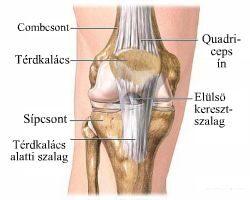 térd ankylozáló artrózisa duzzanat a lábujjak artritiszével