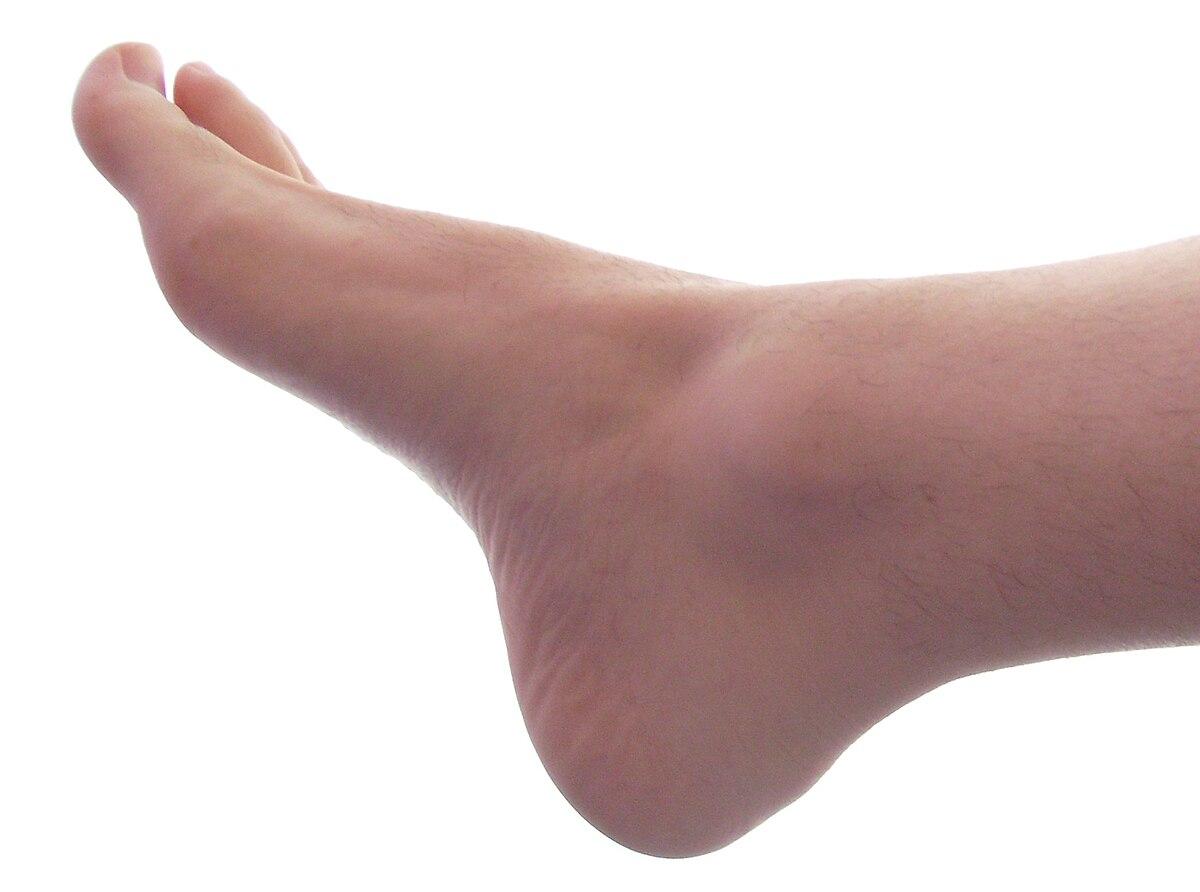 a bal láb térdfájdalma)