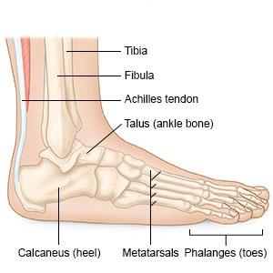 mennyi fáj a bokaízület