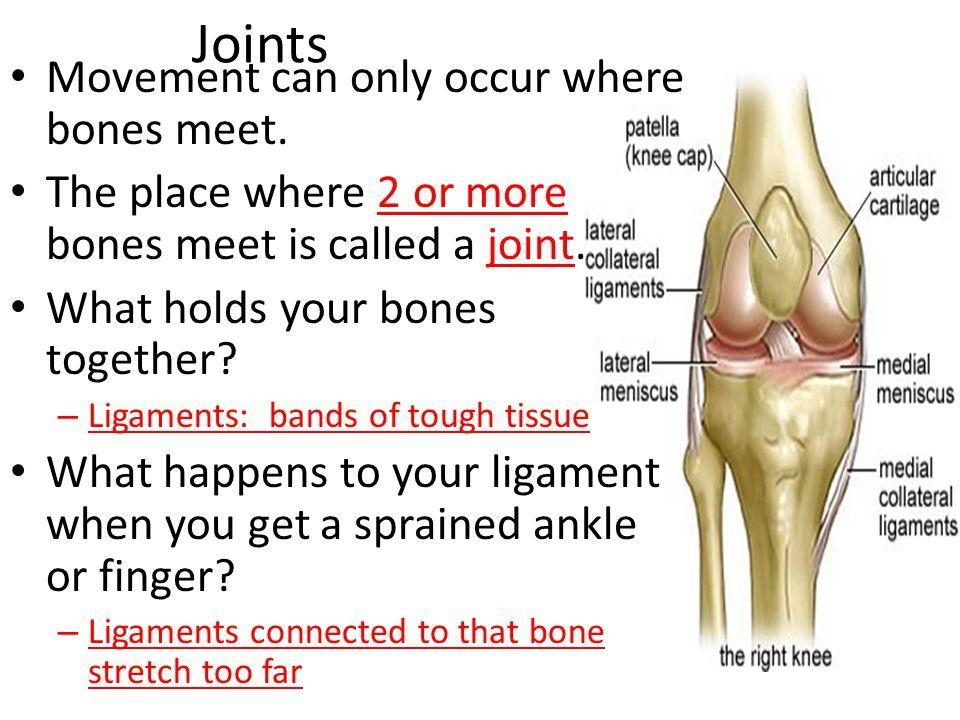 csípő-sprain helyreállítási idő)