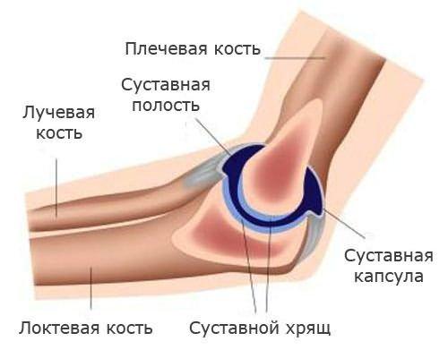 a könyökízületek fájnak a nyújtás során)
