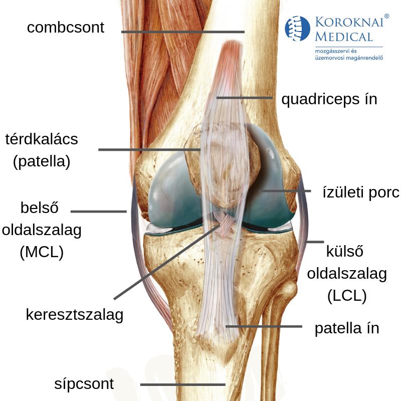 miért fáj a térd futás után fájdalom éjjel a csípő területén