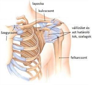 diffúz artrózis kezelése fájdalomcsillapító ízületi gyulladások