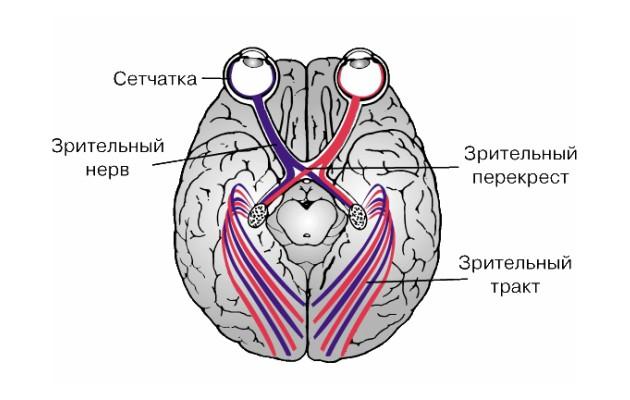 heparin az ízületek duzzanatából)