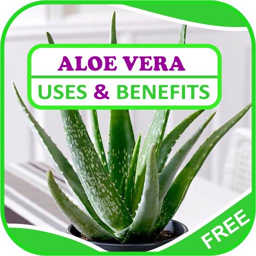 Prosztatagyulladás kezelése agave juice-mal