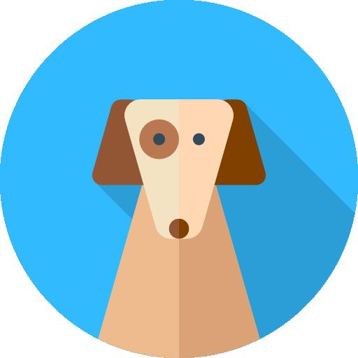 Ízületi gyulladás (arthritis) kutyáknál - budapest-nurnberg.hu - K9 FullFlex