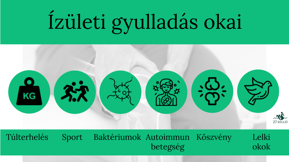mentol gyógyszerek ízületi fájdalmak kezelésére)