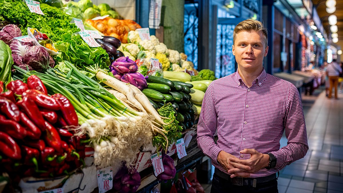 vegetarianizmus és ízületi betegségek