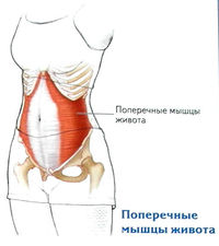 térdízület artrózissal