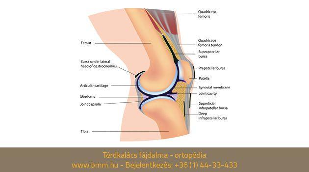synovitis térdízületi gyulladás