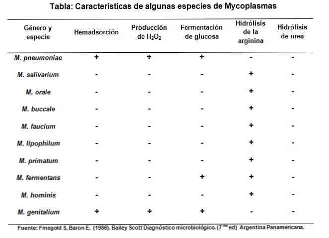 mycoplasma hominis ízületi fájdalom térdízület bal gonarthrosis hogyan kezelhető