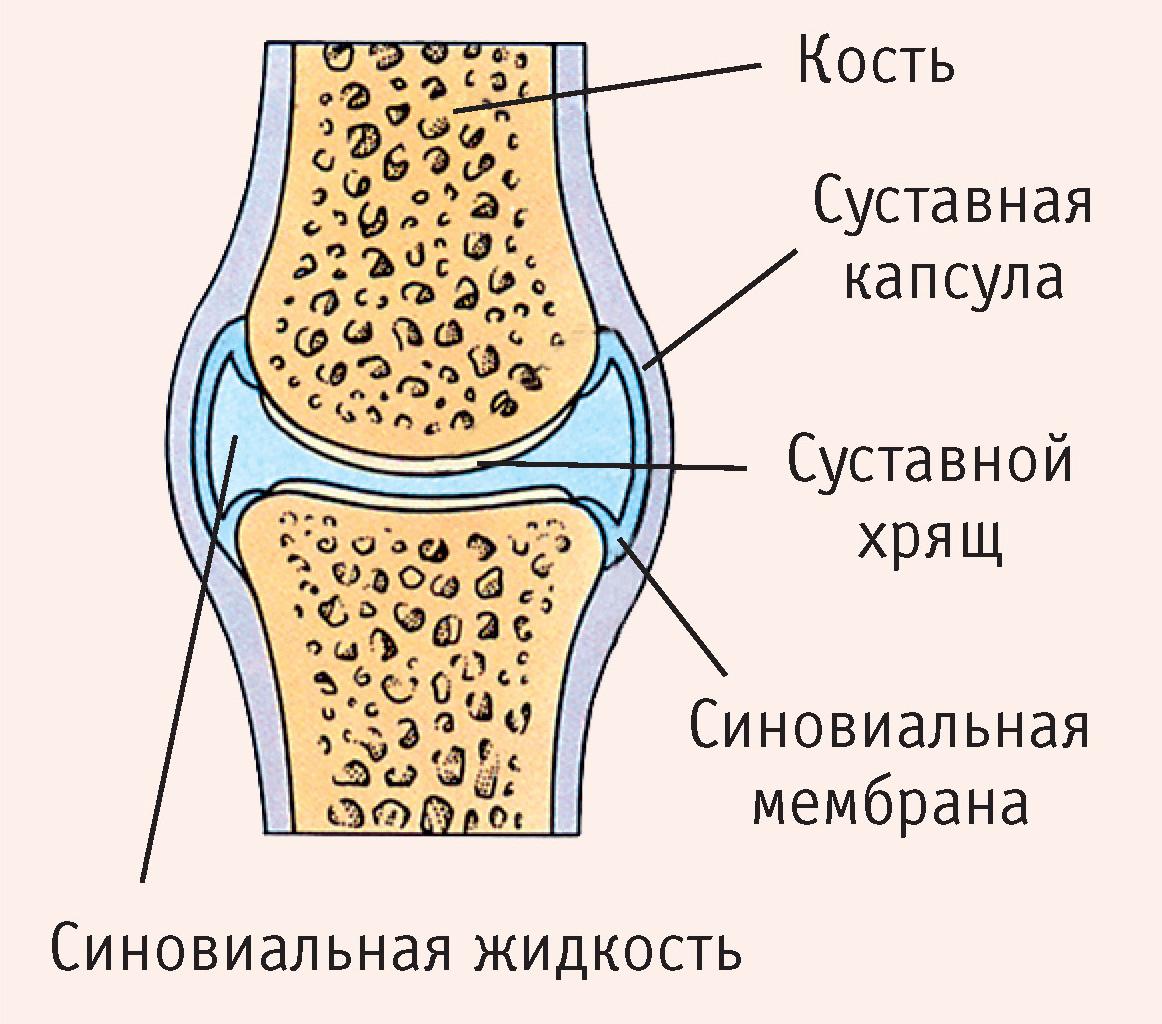 A Dimexid alkalmazása artrózisban - Csukló