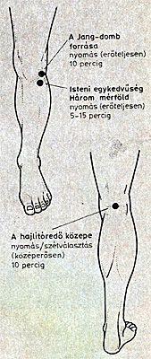 akupresszúra a térd artrózisában a csípőízület deformáló coxarthrosisának 2 fokos kezelése