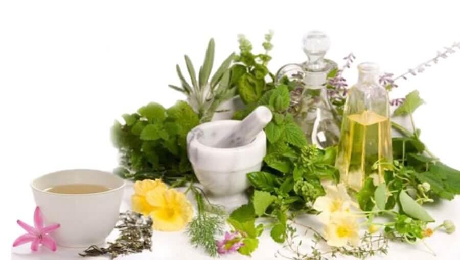 gyógynövények az ízületi fájdalmak kezelésére)