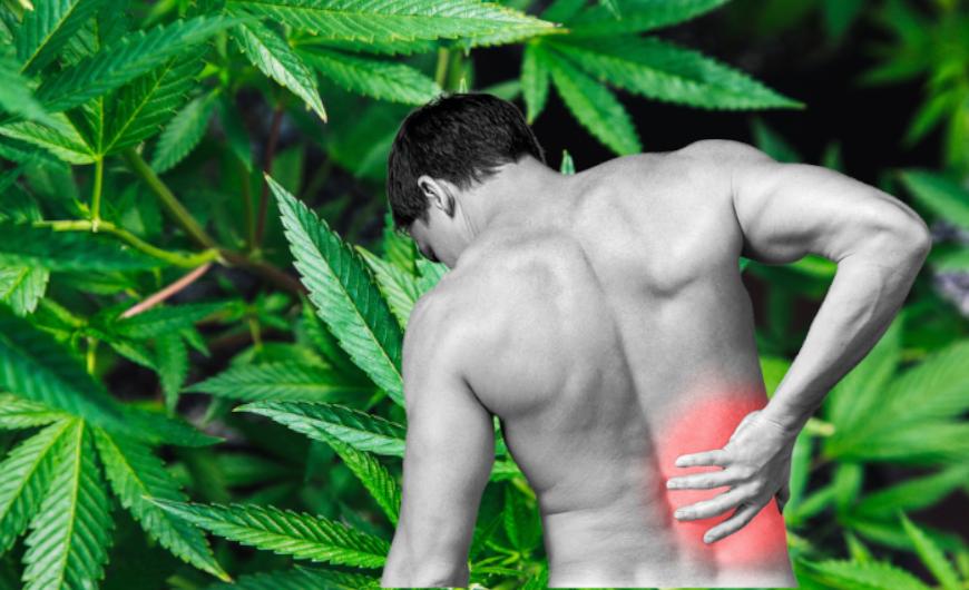 orális gyógyszerek ízületi fájdalmakhoz)