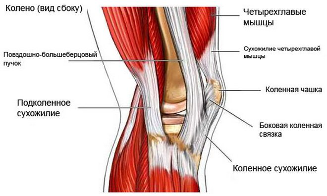 fájdalom a térdízületben sportolóknál
