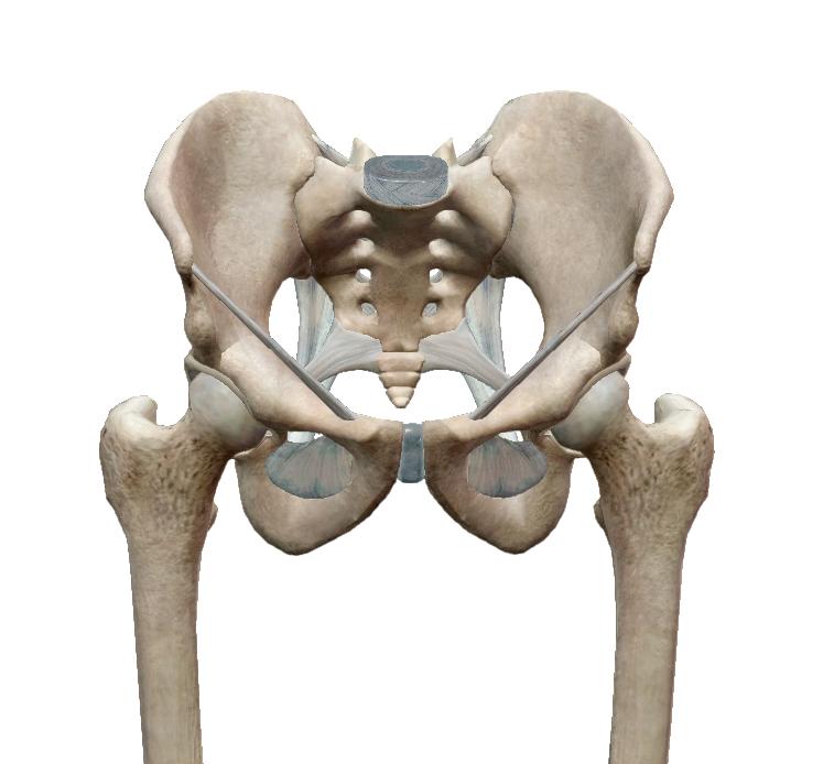 összenyomja a lábát ízületi fájdalmak miatt vállfájdalom orvos