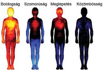 izomfájdalmak és rázó izületek