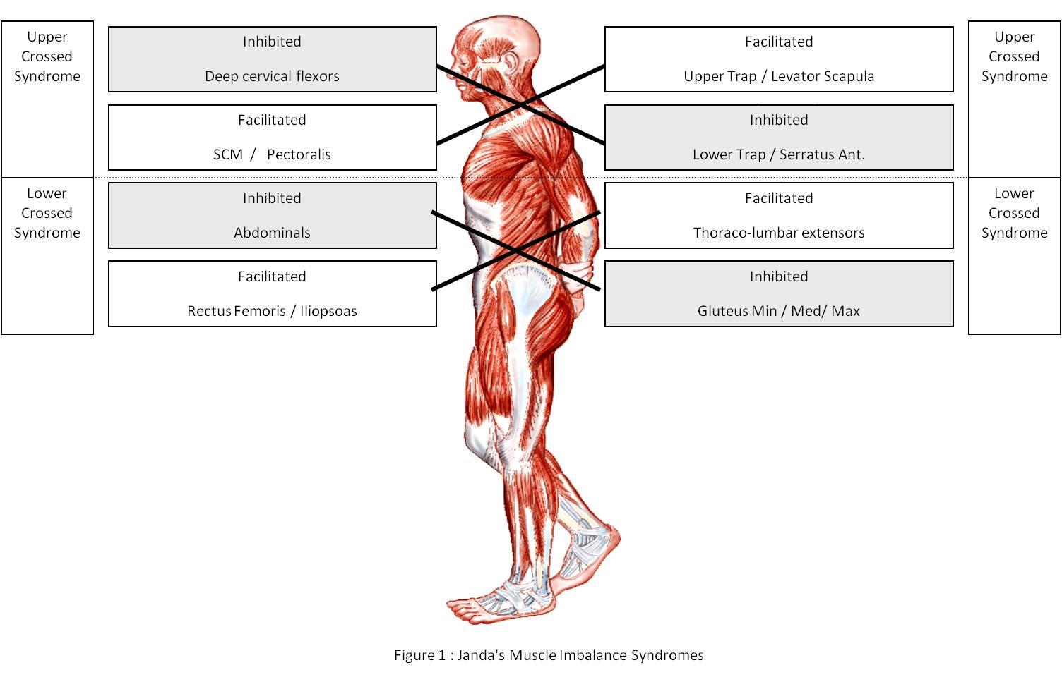 radiológiai ízületi kezelés)