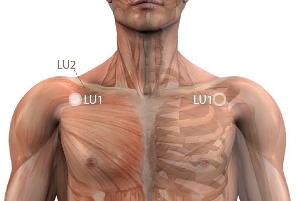 eszközök a csontok és ízületek megerősítéséhez csípőízület polyarthrosis kezelése