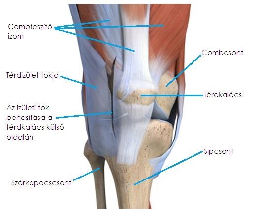 miért fáj a jobb láb térdízülete