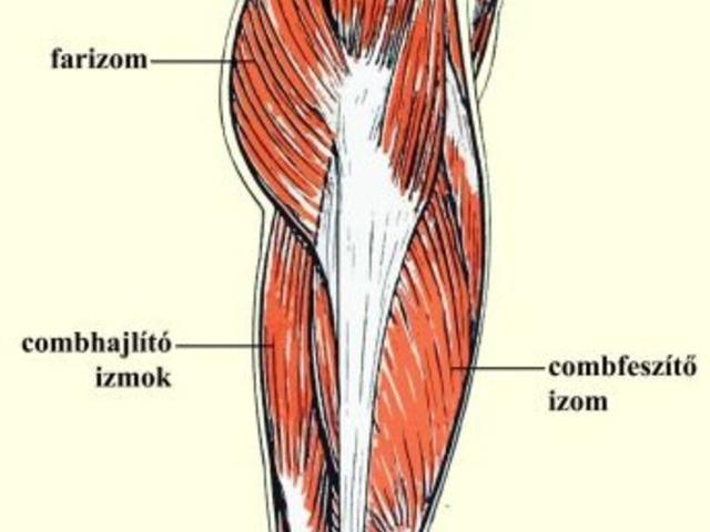 a csípőízület fáj a bursitisről